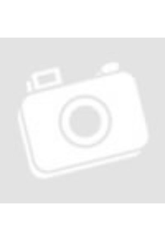 Egészségmarket Paleo&Vegán Cukormentes Mogyorós Fehércsokoládé 80g